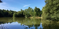 Warren Park Farm, Alderholt - UK Fishing Holidays
